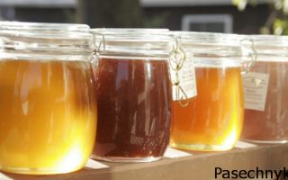 Сорта самих вкусных и полезных видов меда