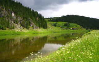 Разнообразные сорта яблонь для Урала