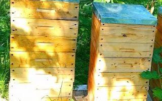 Как правильно содержать пчёл в альпийских ульях