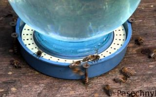 Процесс изготовления поилки для пчел