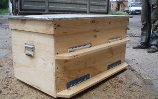 Специфика содержания пчёл в ульях лежаках