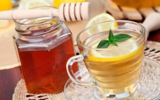 В чем польза употребления воды с лимоном и медом