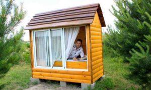 Пчелиный домик: лечение пчёлами