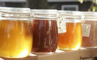 Сорта самых вкусных и полезных видов меда