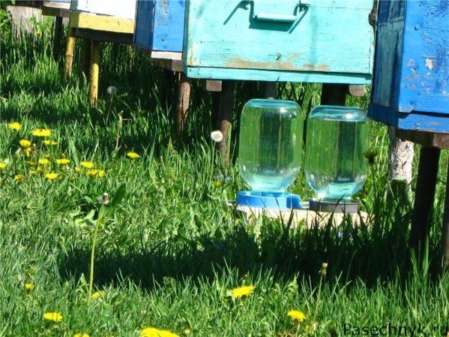 поилки для пчел и ульи