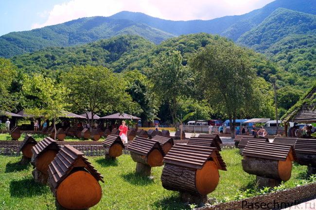 пчеловодство в Абхазии