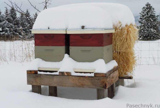 ульи с соломой под снегом