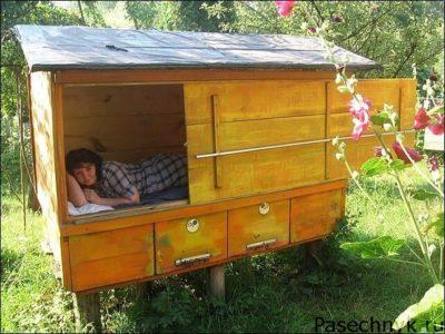 женщина в домику с пчелами