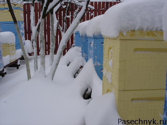 улья из пенополистирола в снегу