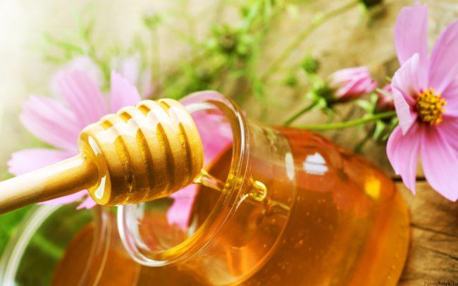 алтайский мед в банке