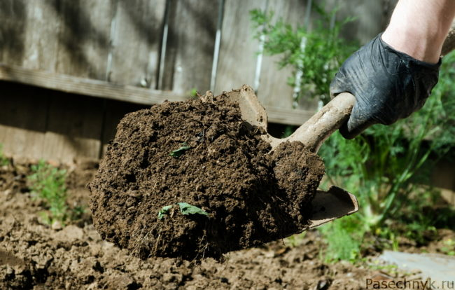 перекопка почвы