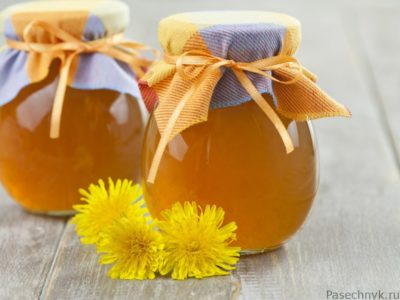одуванчиковый мед