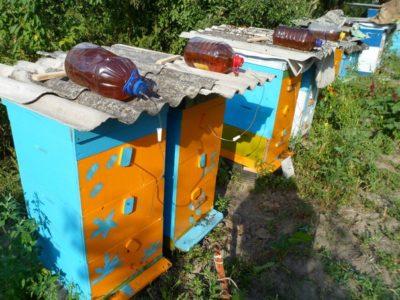 внешняя кормушка для пчел
