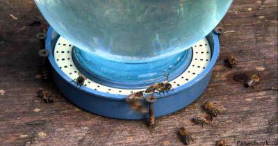 поилки для пчел из банки