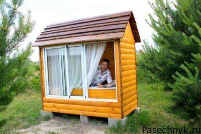 мужчина в домику с пчелами