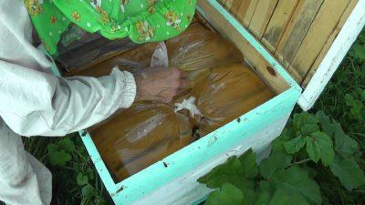 кормление пчел из пакетов