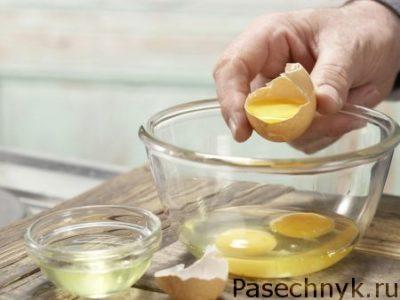 белок куриного яйца