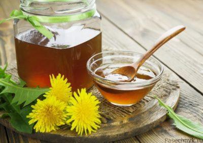 одуванчики и мед на столе