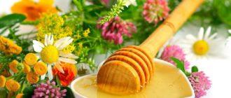 мед из разных трав